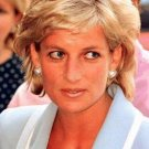 Princess Diana photo 4x6   ~ just lovely ~ 9