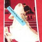 Princess Diana 4x6 photo ~ SHEER ELEGANCE 189 ~ wedding