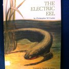 The Electric Eel Christopher Coates David Stone Vintage