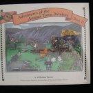 Adventures of the Animal Town Aviators Book II Dummer