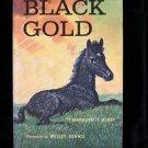 Black Gold Marguerite Henry Wesley Dennis Vintage SC