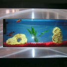 Plasma Wall Mount Fish Tank Aquarium Hanging Art