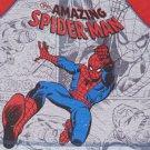 Spiderman Boys' 2-piece Pajama Set-Blue and Red NWT PJs Marvel Comics Warm