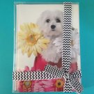 Maltese Flower Thank You Greeting Cards 10 Pack Dog Pet  Animal New Gift Boxed