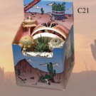 "Cactus Gift Box Arizona Grown 3 Plants 4"" Images Style Pot Southwest Gift"