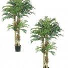 Set of 2 - 6' Silk Artificial Phoenix Palm Trees - lpx801-gr
