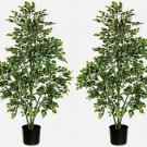 Set of 2 - 5' Birch Artificial Trees - ltw324-vg