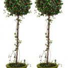 "Set of 2 - 30"""" Single Ball Angel Vine Silk Topiary in Pot - lqi127-gr"