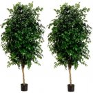 Set of 2 - 7' High Quality Silk Ficus Trees in pots - ltf837-gr