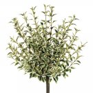 "Set of 6 - 16""""OREGANO_BUSH_GR/WH - pbh078-gr"