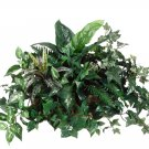 Silk Pothos / Fern / Philo Plant in Metal Ledge Container - wp7312-gr