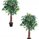 Set of 2 - 3' Camellia Leaf Silk Trees - lpc003-gr