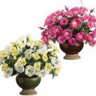 "16"""" Mixed Silk Petunia Plants in Ceramic Pot Assorted - wf0011"