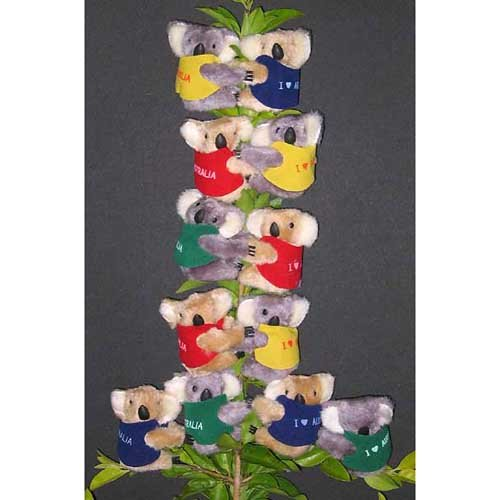 Clip on Koala Bear from Australia ( pack of 12 bears ) - Very Cute Koalas (0057)