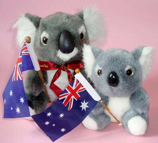 Koalas Plush Toys (pk of 2) ~ 16cm & 12cm high,Australian Flag