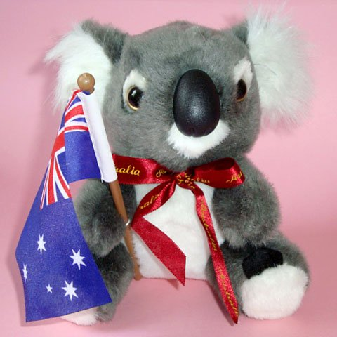 Koala Plush Toy ~ 16cm high, with Australian Flag