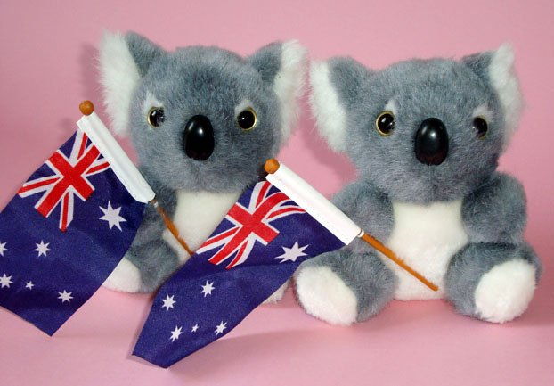 Koala Bears Plush Toys (2) ~ 12cm high, Australian Flags