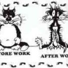 Before Work After Work License Plate