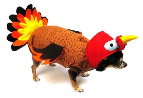 Dog Clothes Adorable Turkey Costume