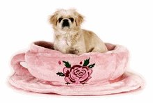 TEACUP SAUCER DOG BED
