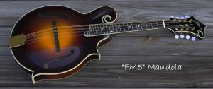 """FM5"" Mandola + Custom Case"
