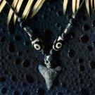 Fossil Bull Shark Tooth w/ Skull Necklace