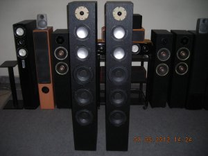 "Rs 20000 1"" Tweeter 5"" Subwoofer x 2 6"" Woofer x 3 295 Watts RMS Tower Speaker"