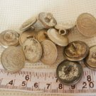Argentina Army or Police  Uniform Button 14  Buttons  LOT