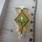 Argentina Army Ski Skiing Mountain Andes Badge Pin #2