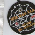 Argentina Air Force Wan Military Web Operations Squad Spider Patch