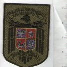 Argentina Air Force Coaching and Training  Group Subdued Patch