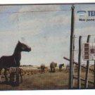 Argentina Gaucho Molina Campos Horse Riding Phone Card