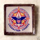 United States Boy Scouts Scout BSA Powell  Pin Pins