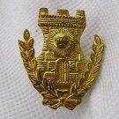 Argentina Police Corrections DOC Prison Emblem Badge