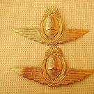 Argentina Air Force Visor Hat Badge Wings LOT OF 2