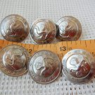 Argentina  Federal Police Uniform Buttons LOT OF 6