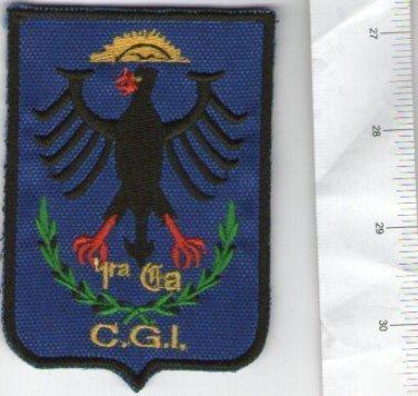 Argentina Police CGI Eagle SWAT Team Shoulder Patch