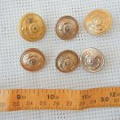 Argentina Navy Marines Infantry IMARA  Uniform Button Buttons LOT OF 6