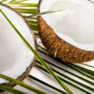 Coconut Conditioning Scented Pumice Stone