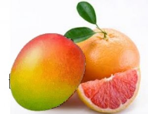 Grapefruit Mango Conditioning Scented Pumice Stone