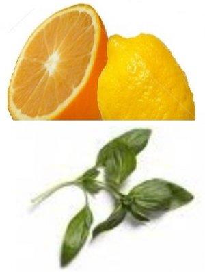 Citrus & Basil Scented Hand Sanitizer