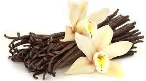 Tahitian Vanilla Scented Hand Sanitizer