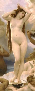 Aphrodite Scented Kona Coffee Exfoliating Face Scrub