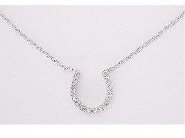 Large Horseshoe Necklace