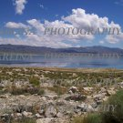 Walker Lake 8 x 10 photo print new