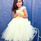 Princess Inspired Tutu Dress - Belle