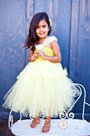 Princess Inspired Tutu Dress - Belle