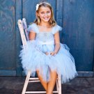 Princess Inspired Tutu Dress - Cinderella
