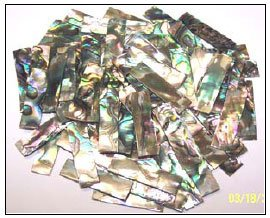 Abalone Shell Blank (Item: GPS1010)