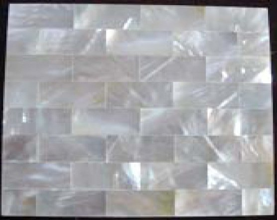 White Lip Shell Tiles (1 Square Meter)